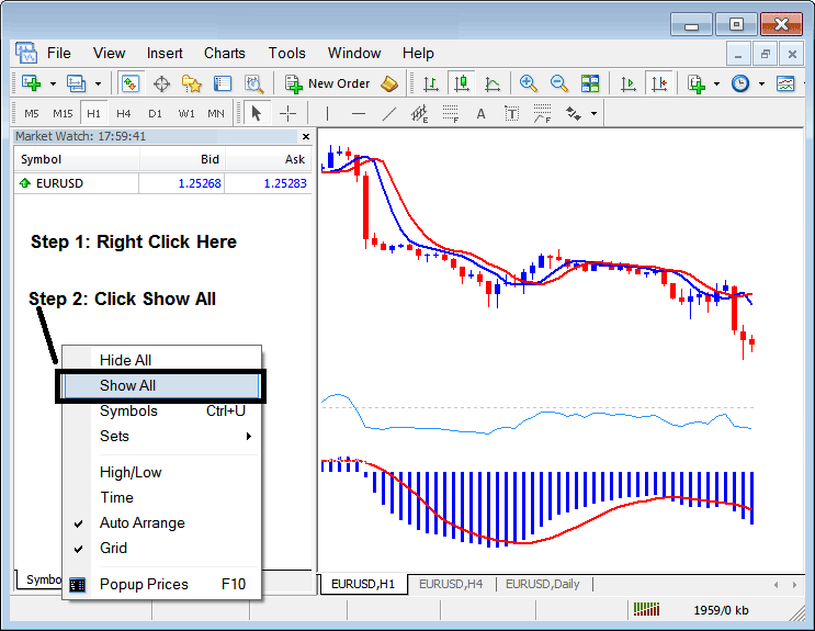 How to Display and Show all Currency Pairs Symbols Available on MetaTrader 4 Forex Platform