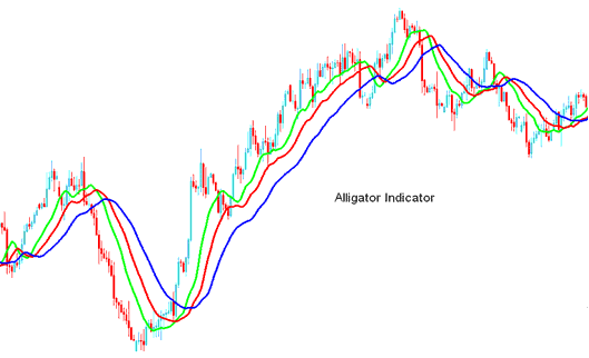 Alligator forex