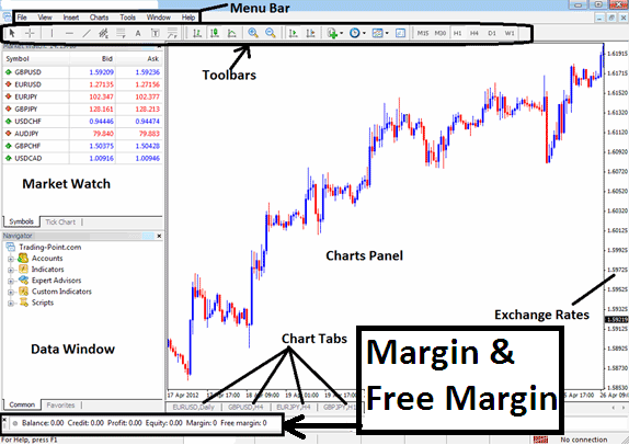Margin and Free Margin is displayed by the meatrader4 platform