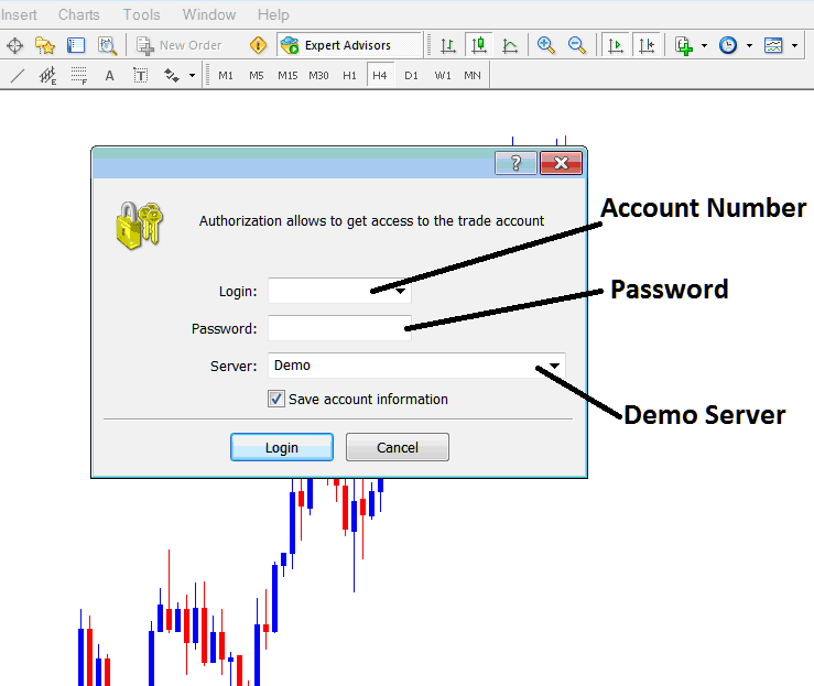 Demo Account Login and Password Details