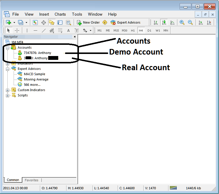 Demo Account and Real Account on Forex Metatrader 4 Platform