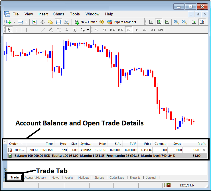 Account Balance and Open Trade Details on MetaTrader 4 Terminal