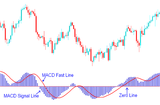 MACD lines- the fast line and the signal line