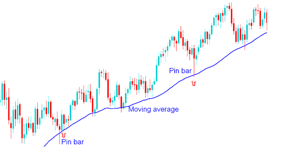 Pin Bar Price Action Combined with Moving Averages