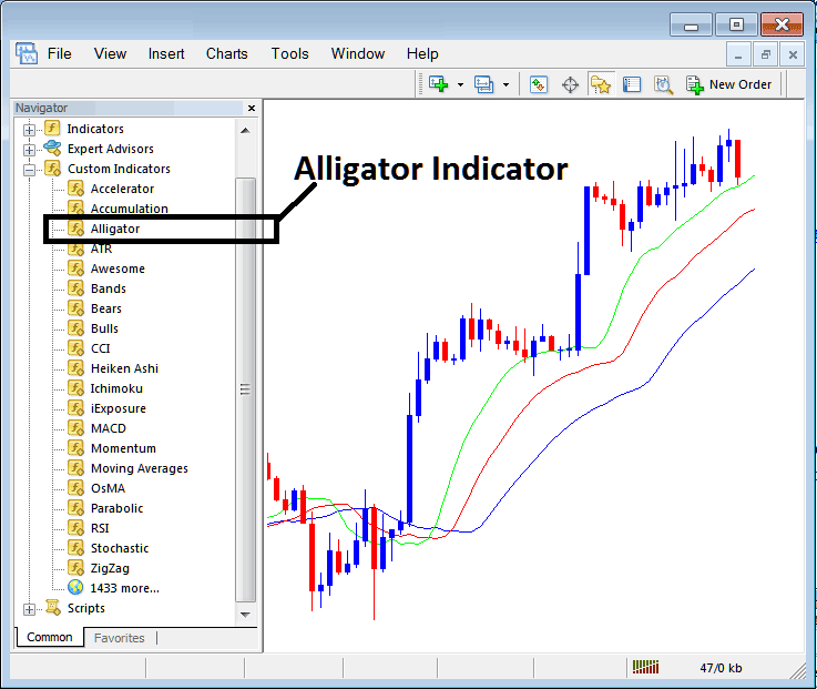 How To Place Alligator Technical Indicator on Forex Trading Charts